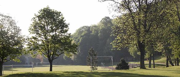 Sportplatz und Bäume