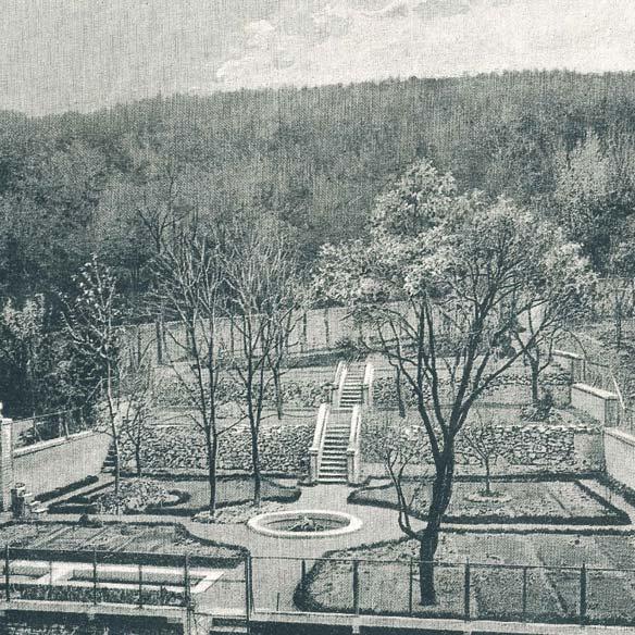Botanischer Garten um 1920